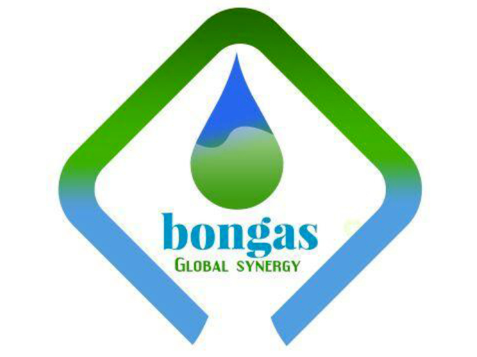 Bongas Global Synergy